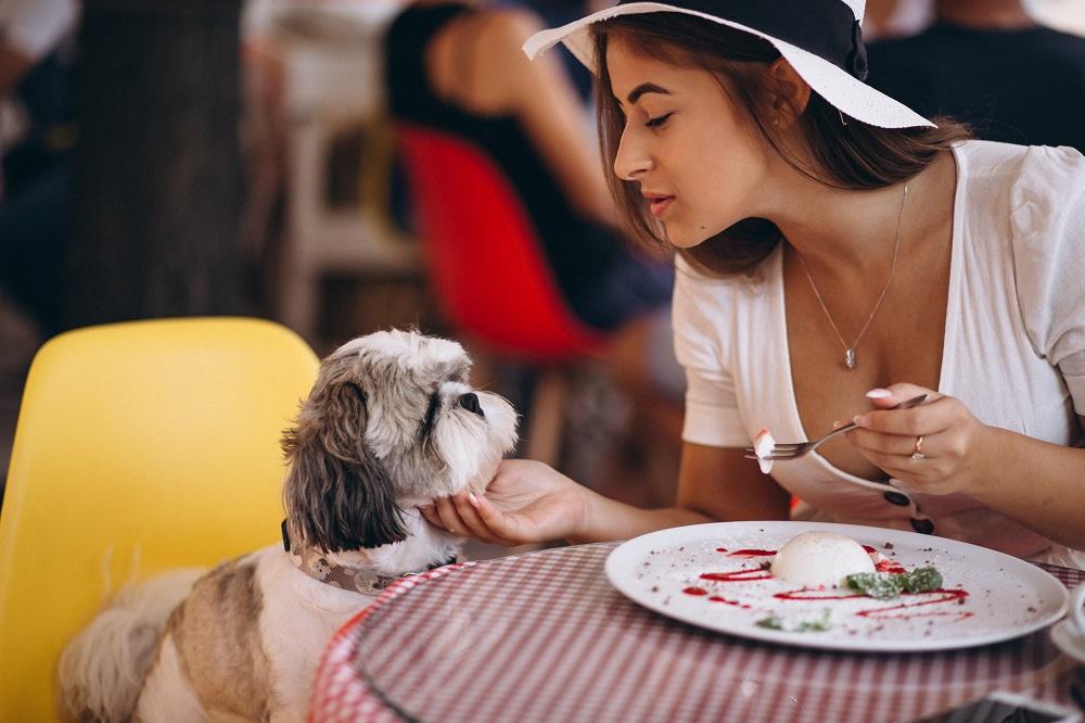 beneficios de vivir con un perro
