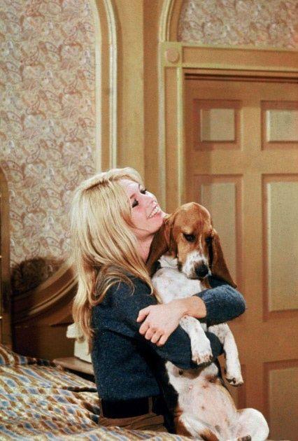 Bridgette Bardot y su basset hound