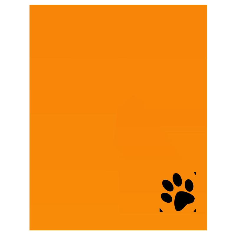 distintivo naranja contra el maltrato animal