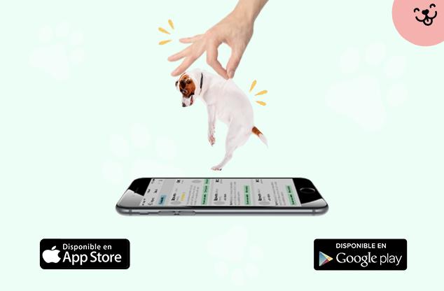 mejor app para cuidar perros