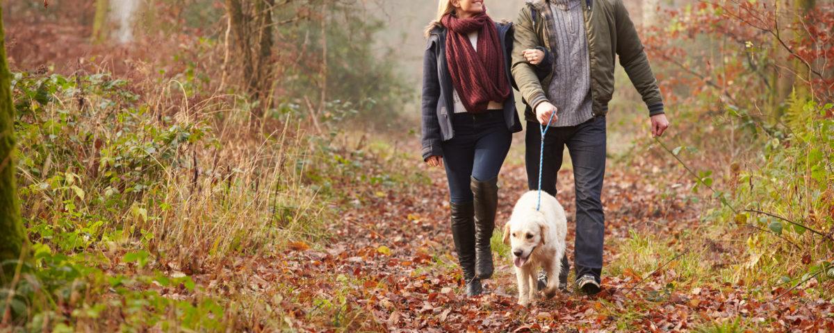 pareja paseando a su perro