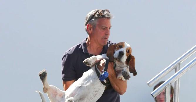 George Clooney y Milie