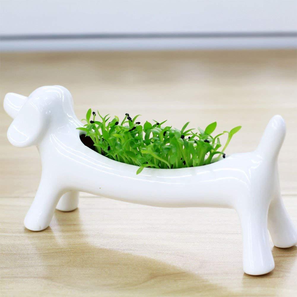 maceta en forma de perro