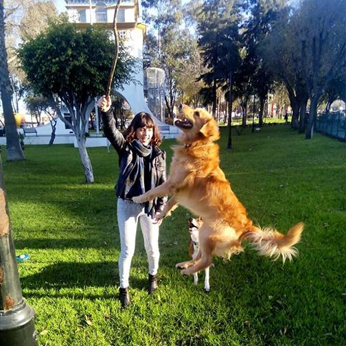 perro jugando con cuidadora